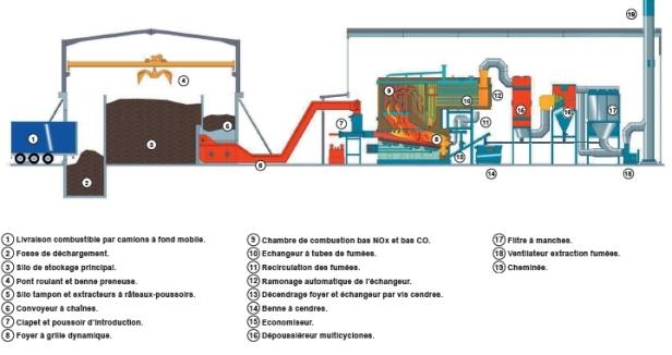 Un exemple de centrale biomasse
